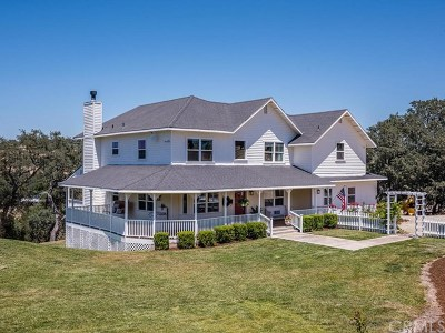 Paso Robles Single Family Home For Sale: 1940 S River Road