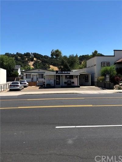 San Luis Obispo County Commercial For Sale: 7405 El Camino Real
