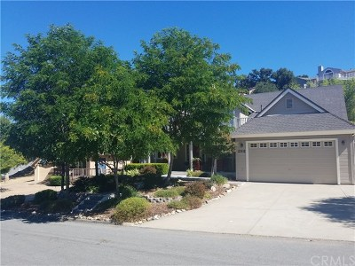 Bradley Single Family Home For Sale: 2302 Lakeview Drive