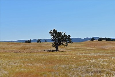 Monterey County Residential Lots & Land For Sale: 47920 Lockwood Jolon Road