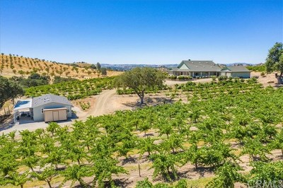 Paso Robles Single Family Home For Sale: 4775 Union Road