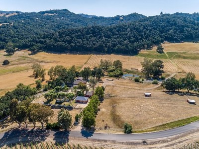 Paso Robles Single Family Home For Sale: 335 Cypress Mountain Drive