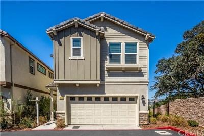 Paso Robles Single Family Home For Sale: 319 Oak Hill Road