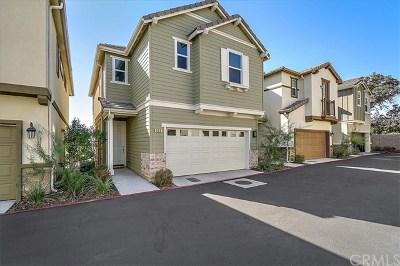 Paso Robles Single Family Home For Sale: 315 Oak Hill Road
