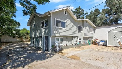Paso Robles Single Family Home For Sale: 1733 Riverside Avenue