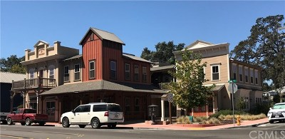 San Luis Obispo County Commercial Lease For Lease: 408 S Main Street #220
