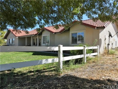 Paso Robles Single Family Home For Sale: 6440 Viborg Road