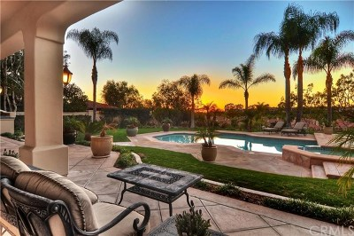 Laguna Niguel Single Family Home For Sale: 13 O Hill