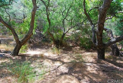Modjeska Canyon, Silverado Canyon Residential Lots & Land For Sale: 28552 Silverado Canyon Road