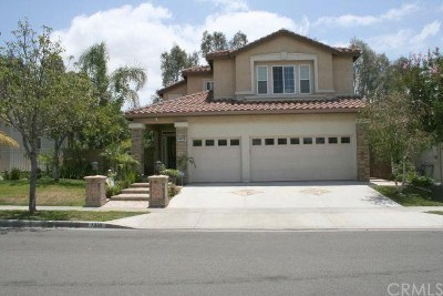 Placentia Single Family Home For Sale: 1310 Campanis Lane
