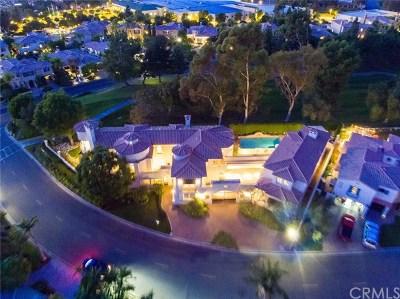 San Juan Capistrano Single Family Home For Sale: 30831 Via Conquista