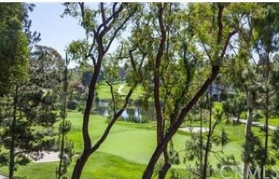 Newport Beach Condo/Townhouse For Sale: 45 Canyon Island Drive #45