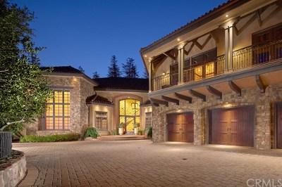 Coto de Caza Single Family Home For Sale: 30822 Via Vista