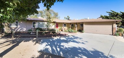 Newport Beach Single Family Home For Sale: 2161 Mesa Drive