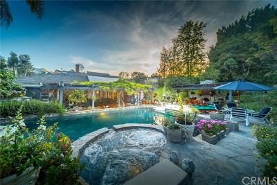 Laguna Hills Single Family Home For Sale: 25811 Pecos Road