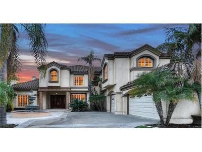 Laguna Hills Single Family Home For Sale: 25232 Rockridge Road
