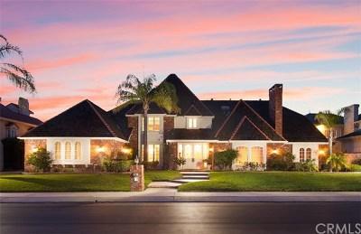 Orange Single Family Home For Sale: 3347 E Mandeville Place