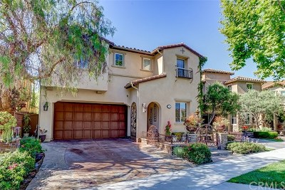 Aliso Viejo Single Family Home For Sale: 21 Santa Barbara Drive