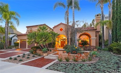 Mission Viejo Single Family Home For Sale: 22051 Oak Grove