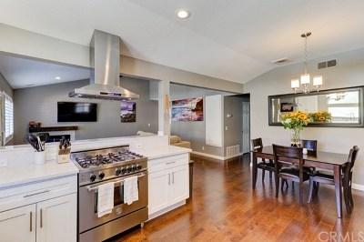 Dana Point Single Family Home For Sale: 33791 Olinda Drive