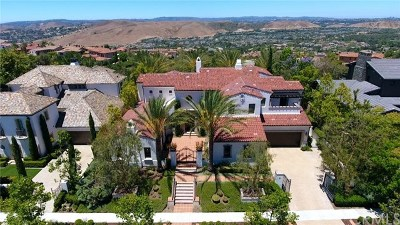 Ladera Ranch Single Family Home For Sale: 81 Bell Pasture Road