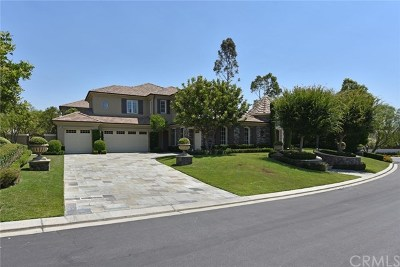 Tustin Single Family Home For Sale: 2395 Portrait Way