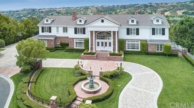 Coto de Caza Single Family Home For Sale: 5 Willow View Lane