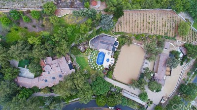Coto de Caza Single Family Home For Sale: 31742 Contijo Way