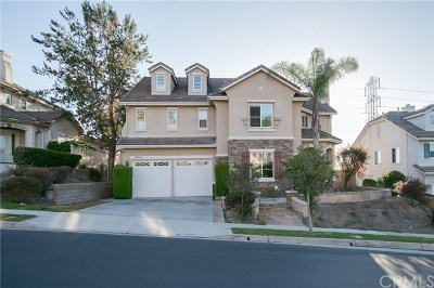Mission Viejo Single Family Home For Sale: 23649 Castle Rock