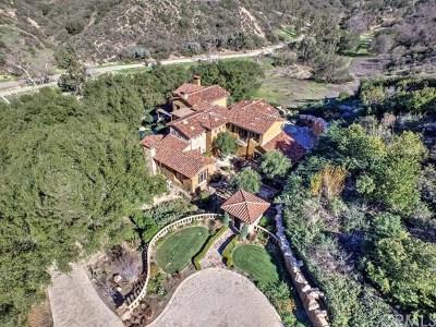 Modjeska Canyon, Silverado Canyon Single Family Home For Sale: 28102 Williams Canyon Road