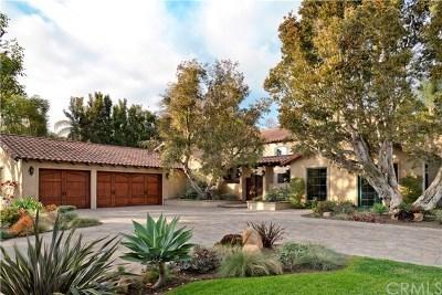 San Juan Capistrano Single Family Home For Sale: 26181 Calle Roberto