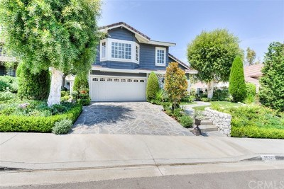 Mission Viejo Single Family Home For Sale: 25241 Darlington
