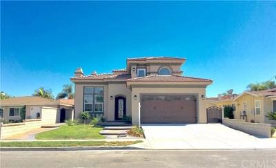 Fountain Valley Single Family Home For Sale: 10392 Avenida Cinco De Mayo