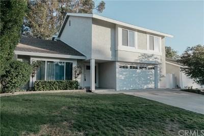 Mission Viejo Single Family Home For Sale: 23912 Copenhagen Street