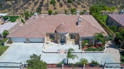 Corona Single Family Home For Sale: 523 C L Fleming Circle
