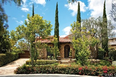 Ladera Ranch Single Family Home For Sale: 3 Fox Hole Road