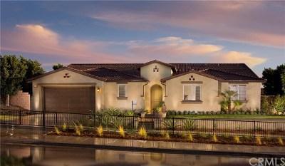 Riverside Single Family Home For Sale: 9558 Alta Cresta Avenue