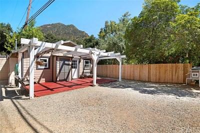 Modjeska Canyon, Silverado Canyon Single Family Home For Sale: 29235 Silverado Canyon Road