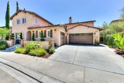 Murrieta Single Family Home For Sale: 26807 Chamomile Street
