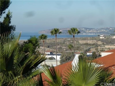 Orange County Residential Lots & Land For Sale: 1300 N El Camino Real