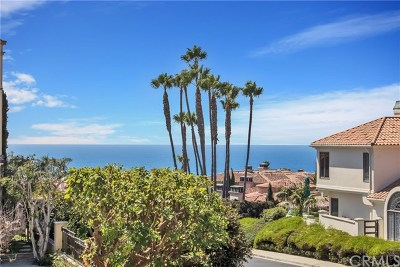 Dana Point Single Family Home For Sale: 93 Ritz Cove Drive