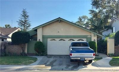 San Juan Capistrano Single Family Home For Sale: 26486 Park Circle