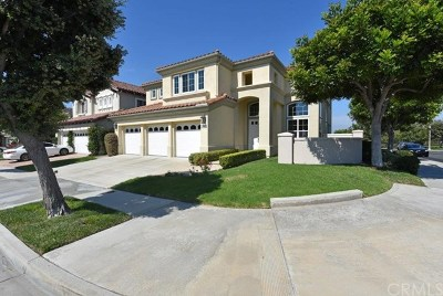 Newport Beach Single Family Home For Sale: 1443 High Bluff Drive
