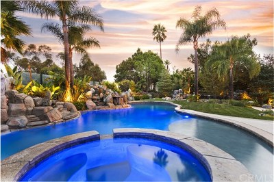 Laguna Hills Single Family Home For Sale: 27743 Hidden Trail Road