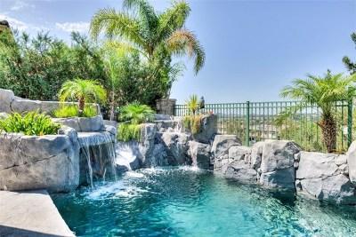 Rancho Santa Margarita Single Family Home For Sale: 13 Bell Canyon Drive