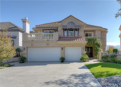 Rancho Santa Margarita Single Family Home For Sale: 32 Thorn Oak
