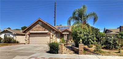 Costa Mesa Single Family Home For Sale: 3142 Bray Lane