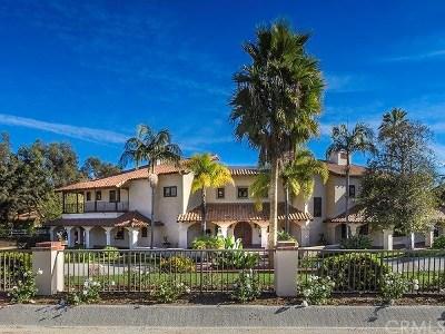 Coto de Caza Single Family Home For Sale: 31381 Trigo Trail