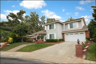 Aliso Viejo Single Family Home For Sale: 10 White Pelican Lane