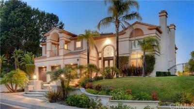 Laguna Niguel Single Family Home For Sale: 76 Vista Montemar